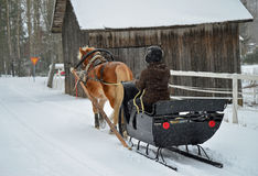 Horse with sleigh Stock Photo