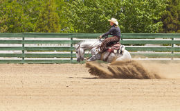 Horse Sliding Stop Royalty Free Stock Photography