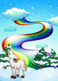 A horse in a snowy area and a rainbow in the sky Stock Images