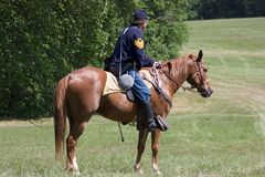 Horse soldier 2. A horse soldier in a civil war reenactment Royalty Free Stock Photos