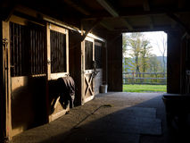 Horse Stable Royalty Free Stock Image