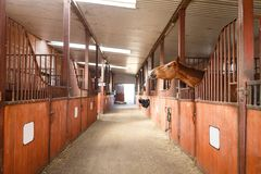 Horse in a stable Royalty Free Stock Images