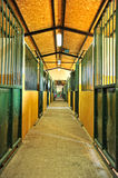 Horse stables. Nice clean horse stables. Good lighting and color Stock Image