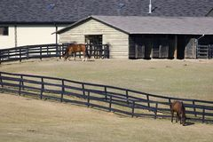 Horse Stables. In the Country in Autumn Royalty Free Stock Image