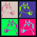 Horse, stallion Arabian breed (Arab, head). Set. Acid color Stock Image