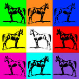 Horse stallion silhouette (arab). Bright background color. Colle Royalty Free Stock Photo