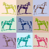 Horse, stallion silhouette (arab). Warm color, pastel. Collectio Stock Image