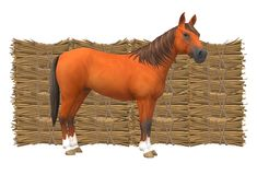 A horse standing in front of some hay stacks piled up one on top of another vector illustration