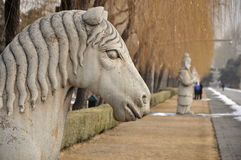 Horse Statue. On the spirit way to the Ming Tombs in Beijing China Royalty Free Stock Images