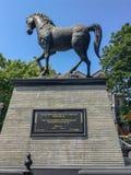 Black horse at kalaghoda mumbai stock photography