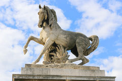 Horse Statue - Paris Royalty Free Stock Image