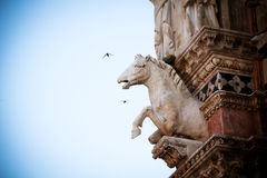 Horse statue in Siena Royalty Free Stock Photos