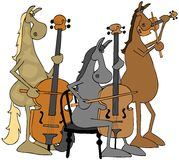 Horse string trio Stock Photo