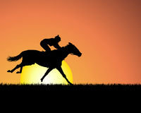 Horse on sunset background Royalty Free Stock Photos