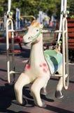 Horse swing Royalty Free Stock Image