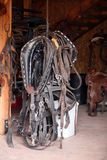 Horse tack Stock Photo