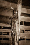 Horse Tack Items. Various horse tack items hang in a stable Stock Image