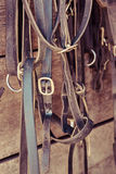 Horse Tack Items. Various horse tack items hang in a stable Stock Photography