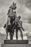 Horse Tamer statue on Anichkov bridge in Saint Petersburg. Stock Image