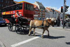 Horse Taxi Stock Images