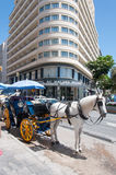 Horse taxi Stock Image