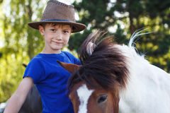 Horse therapy Stock Photography