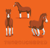 Horse Thoroughbred Cartoon Vector Illustration. Animal Character EPS10 File Format Royalty Free Stock Photo