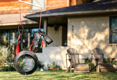 Horse Tire Swing Stock Image