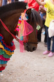 Horse in traditional buddhist monk ordination ceremony Stock Image