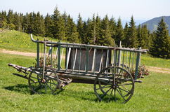 Horse Trailer with Flowers. Trees and Mountains Stock Images