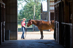 Horse and Trainer at Farm- horizontal Royalty Free Stock Photography