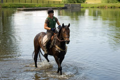 Horse training Stock Photography