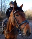 Horse training royalty free stock photo