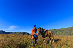 Horse Training at Mount Bromo in East Java, Indonesia Royalty Free Stock Image