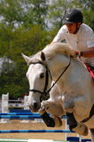 Horse training show Royalty Free Stock Photos