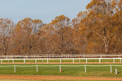 Horse Training Tracks Fencing Trees Royalty Free Stock Images