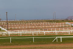Horse Training Tracks Pens Fencing Stock Photography