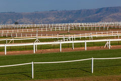 Horse Training Tracks Pens Fencing Stock Images