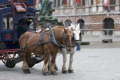 Horse Transport. Tourist Transport in Antwerp, Belgium Stock Images
