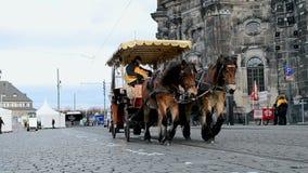Horse transport in Dresden, Germany,. DRESDEN - DEC 29: horse transport on December 29, 2013 in Dresden, Germany. City population on December 31, 2013 has 530
