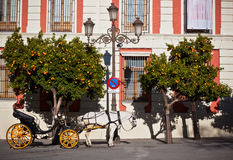 Horse Transport for Tourists in Sevilla, Spain Royalty Free Stock Image