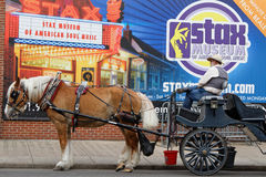 Horse transportation for tourists in Memphis Royalty Free Stock Images