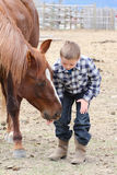 Horse Treats. Young boy in blue feeding his horse treats Royalty Free Stock Photo