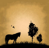 Horse with tree on beige background Royalty Free Stock Photo