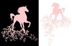 Horse among tree blossom Stock Photo
