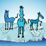 Horse trio on ice Royalty Free Stock Photo