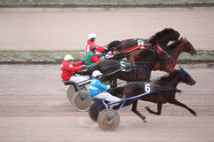 Horse trot racing on Moscow hippodrome Royalty Free Stock Image