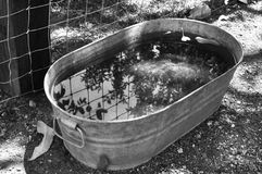 Horse Trough. Metal Horse trough in black and white stock photo
