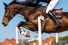 Horse Headless Rider Jump Stock Photography