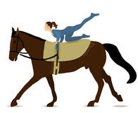 Horse Vaulting. Girl in unitard on dark brown horse with light brown vaulting saddle and simplified bridle, no lead Royalty Free Stock Image